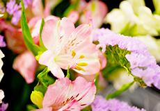 アイコン:控室生花祭壇